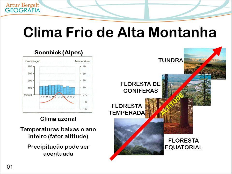 Clima Frio de Alta Montanha Sonnbick (Alpes) Clima azonal Temperaturas baixas o ano inteiro (fator altitude) Precipitação pode ser acentuada TUNDRA FL