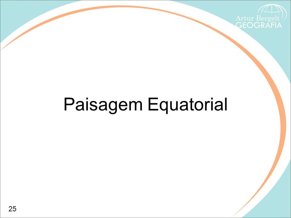Paisagem Equatorial 25