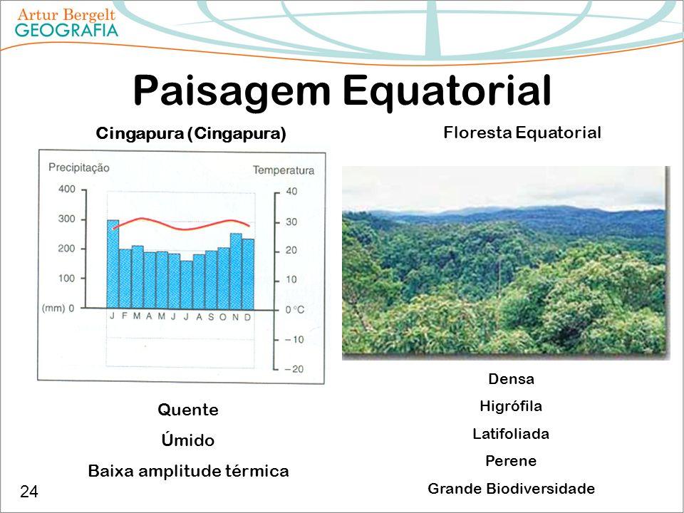 Paisagem Equatorial Cingapura (Cingapura) Quente Úmido Baixa amplitude térmica Floresta Equatorial Densa Higrófila Latifoliada Perene Grande Biodivers