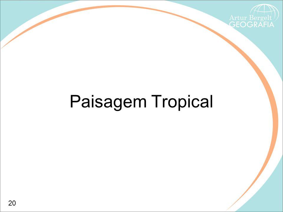 Paisagem Tropical 20