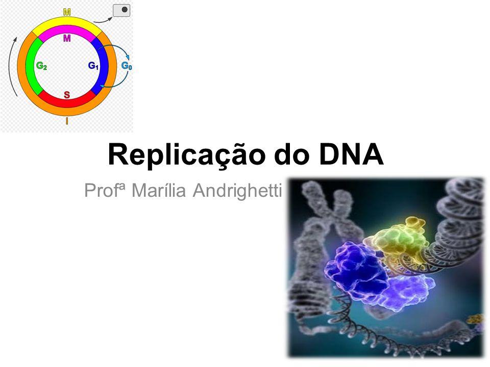 Replicação do DNA Profª Marília Andrighetti