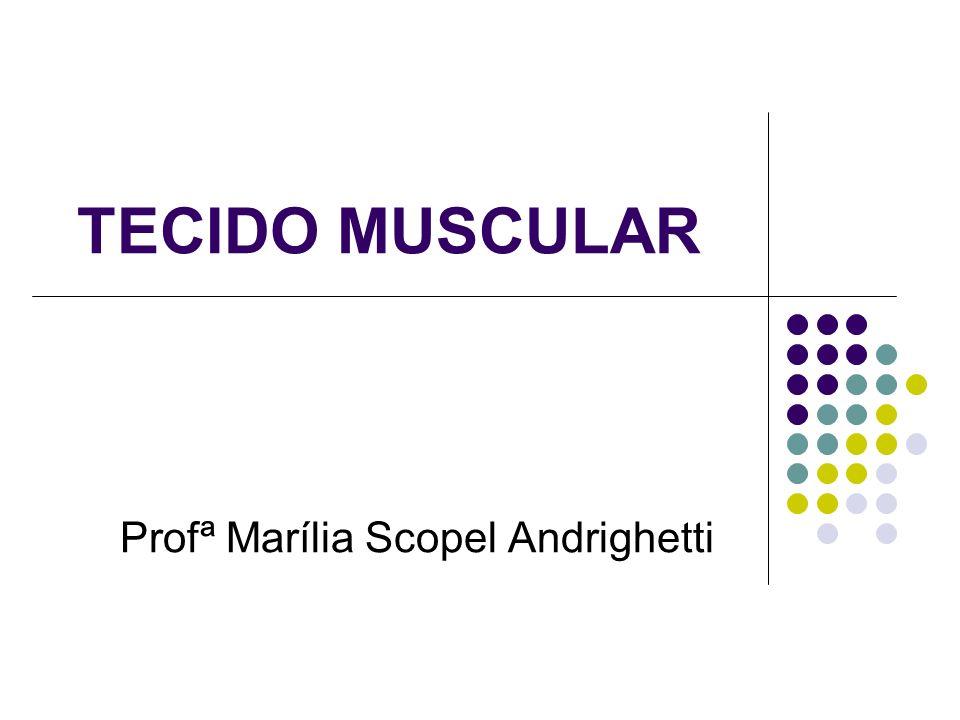 TECIDO MUSCULAR Profª Marília Scopel Andrighetti