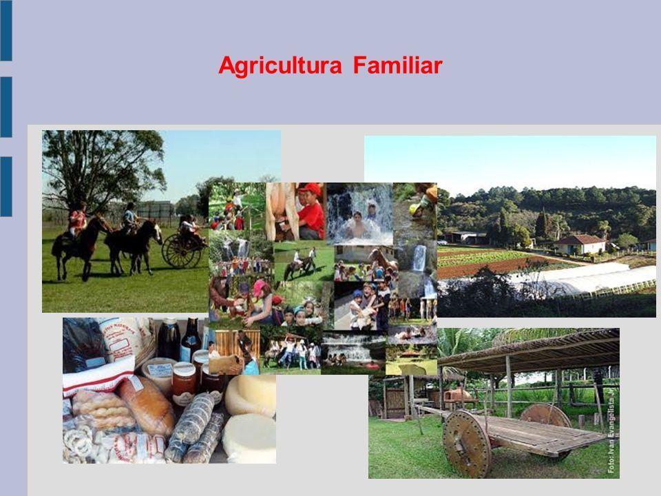 AGRICULTURA FAMILIAR - OBJETIVO Promover o desenvolvimento rural, através da implantação e fortalecimento das atividades turísticas pelos agricultores familiares, integrada aos arranjos locais, agregando renda e gerando postos de trabalho no meio rural, com consequente melhoria das condições de vida.