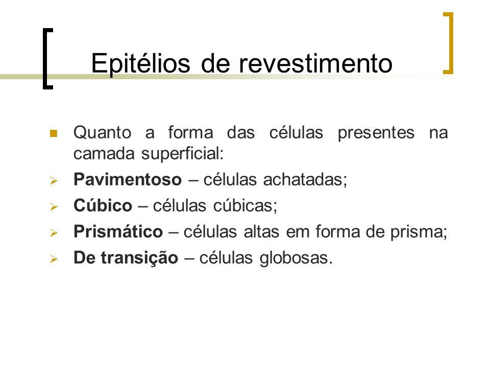 Epitélios de revestimento Quanto a forma das células presentes na camada superficial: Pavimentoso – células achatadas; Cúbico – células cúbicas; Prism