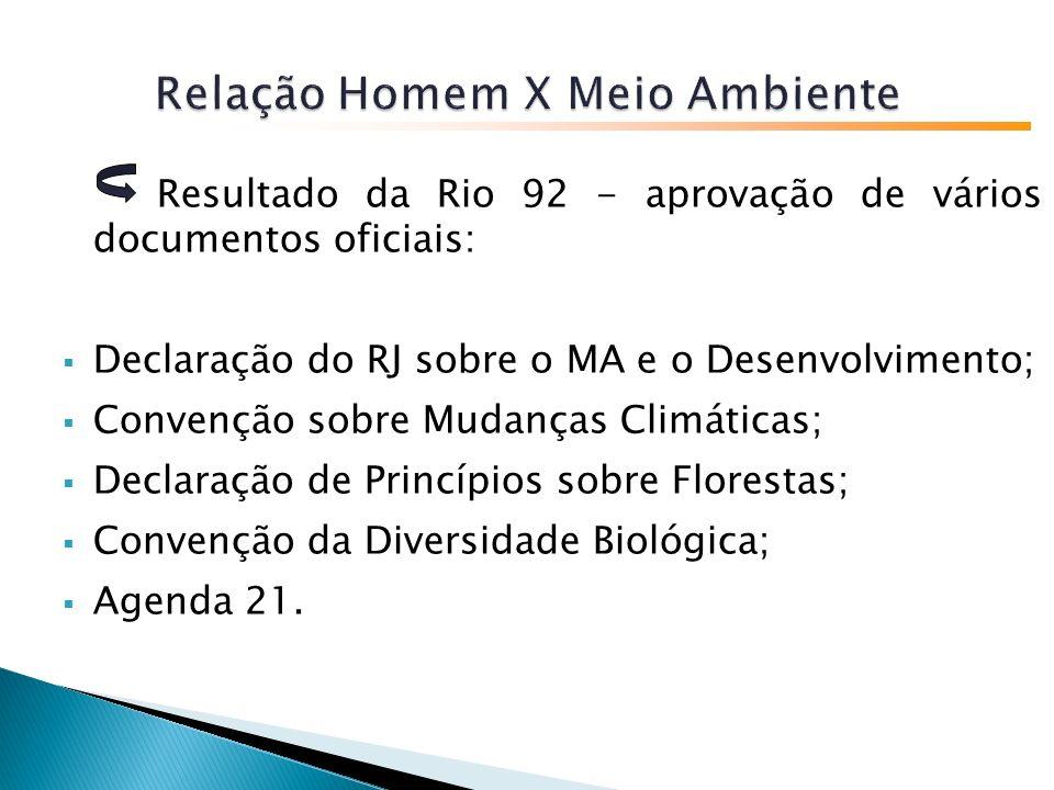 Resultado da Rio 92 - aprovação de vários documentos oficiais: Declaração do RJ sobre o MA e o Desenvolvimento; Convenção sobre Mudanças Climáticas; Declaração de Princípios sobre Florestas; Convenção da Diversidade Biológica; Agenda 21.