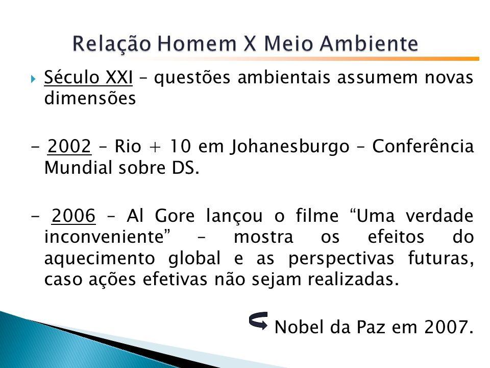Século XXI – questões ambientais assumem novas dimensões - 2002 – Rio + 10 em Johanesburgo – Conferência Mundial sobre DS.