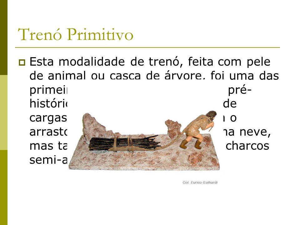 Trenó Primitivo Esta modalidade de trenó, feita com pele de animal ou casca de árvore, foi uma das primeiras soluções que o homem pré- histórico criou