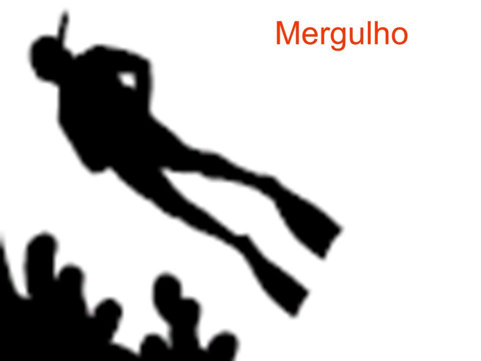 1.DEFINIÇÃO DA ATIVIDADE O mergulho recreativo SCUBA (Self Contain Under Water Breathing Apparatus ou Equipamento de mergulho autonomo) é uma atividade de aventura que pode ser realizada por praticamente todo mundo.