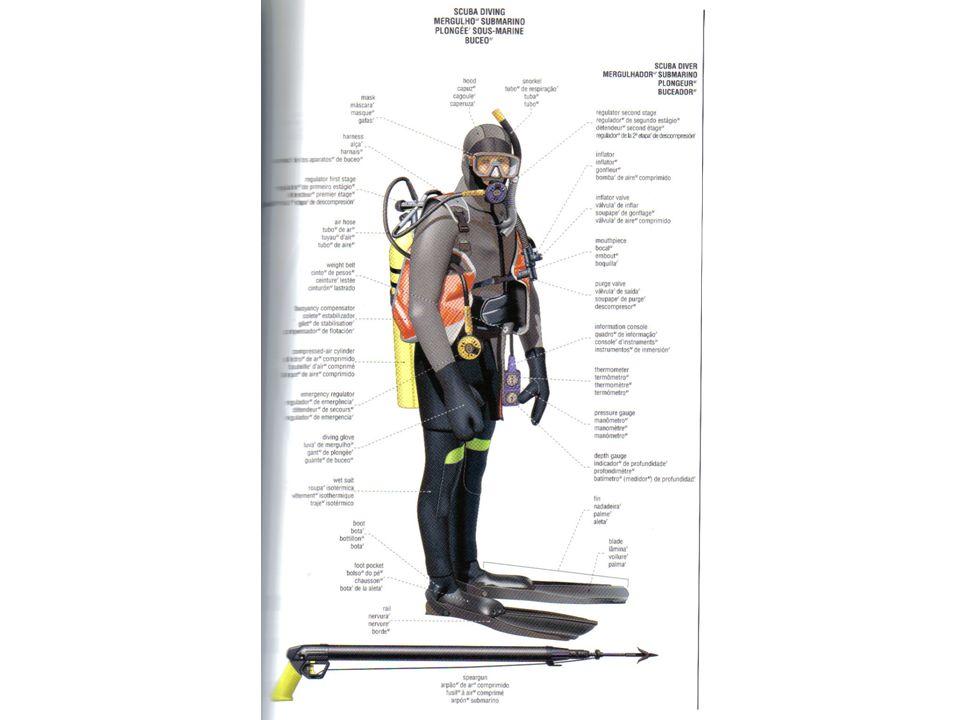 Mergulho SCUBA recreativo Visando a segurança do mergulhador, alguns equipamentos SCUBA são de uso OBRIGATÓRIO.