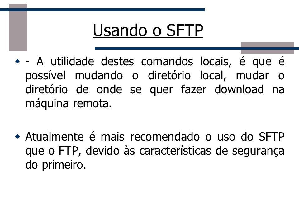 Usando o SFTP - A utilidade destes comandos locais, é que é possível mudando o diretório local, mudar o diretório de onde se quer fazer download na má
