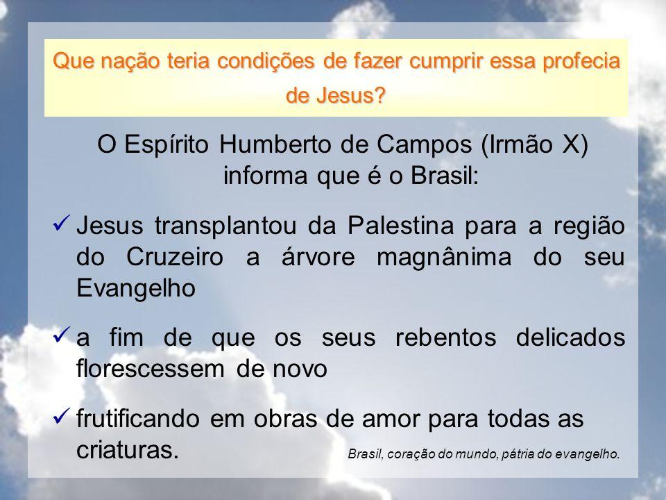O Espírito Humberto de Campos (Irmão X) informa que é o Brasil: Jesus transplantou da Palestina para a região do Cruzeiro a árvore magnânima do seu Ev