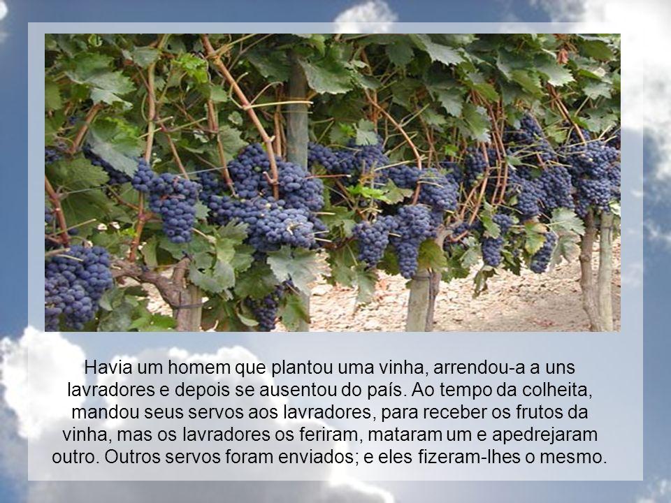 Havia um homem que plantou uma vinha, arrendou-a a uns lavradores e depois se ausentou do país. Ao tempo da colheita, mandou seus servos aos lavradore