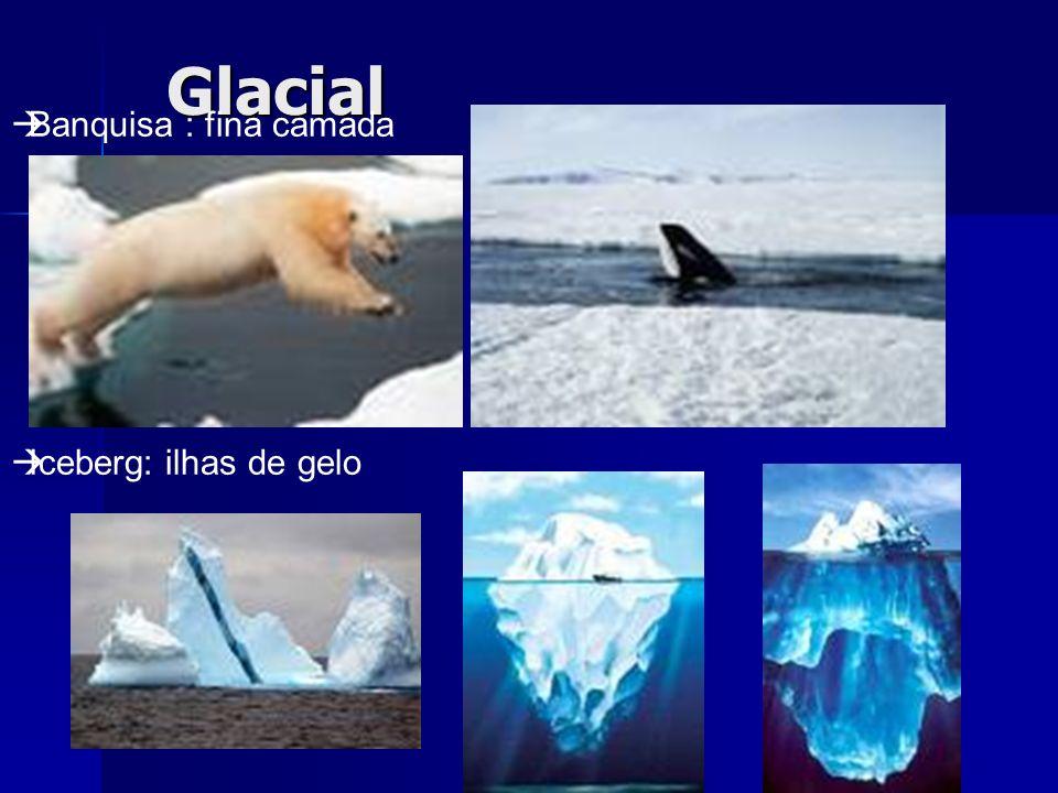 Glacial Morainas: rochas e sedimentos Fiord: antigos vales glaciais