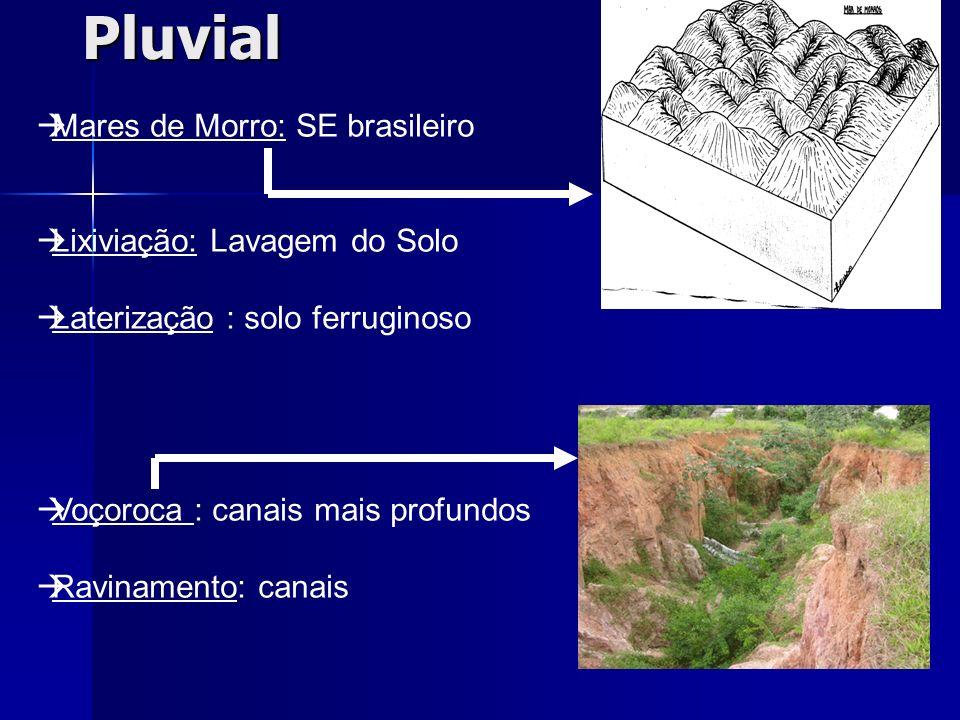 Pluvial Mares de Morro: SE brasileiro Lixiviação: Lavagem do Solo Laterização : solo ferruginoso Voçoroca : canais mais profundos Ravinamento: canais