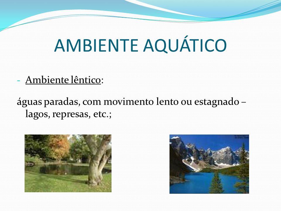AMBIENTE AQUÁTICO - Ambiente lêntico: águas paradas, com movimento lento ou estagnado – lagos, represas, etc.;
