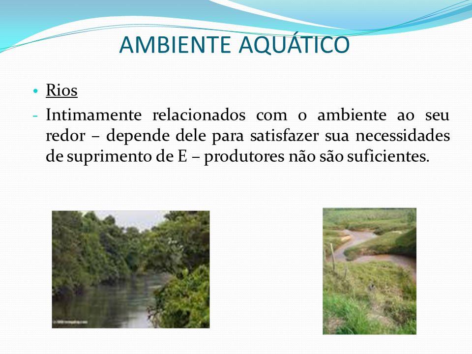 Rios - Intimamente relacionados com o ambiente ao seu redor – depende dele para satisfazer sua necessidades de suprimento de E – produtores não são su