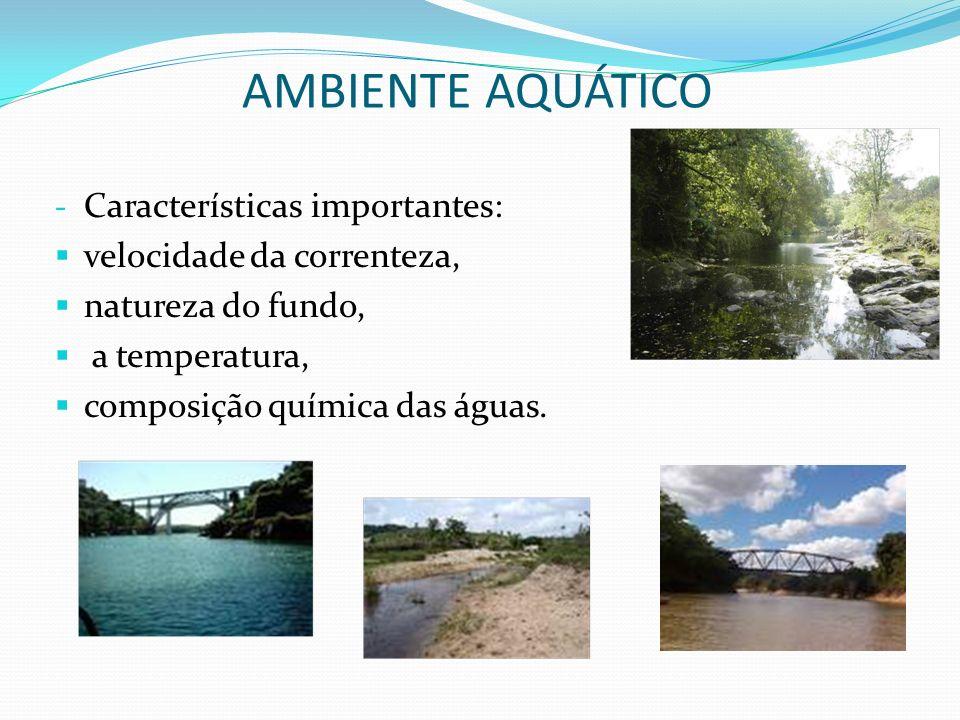 - Características importantes: velocidade da correnteza, natureza do fundo, a temperatura, composição química das águas. AMBIENTE AQUÁTICO