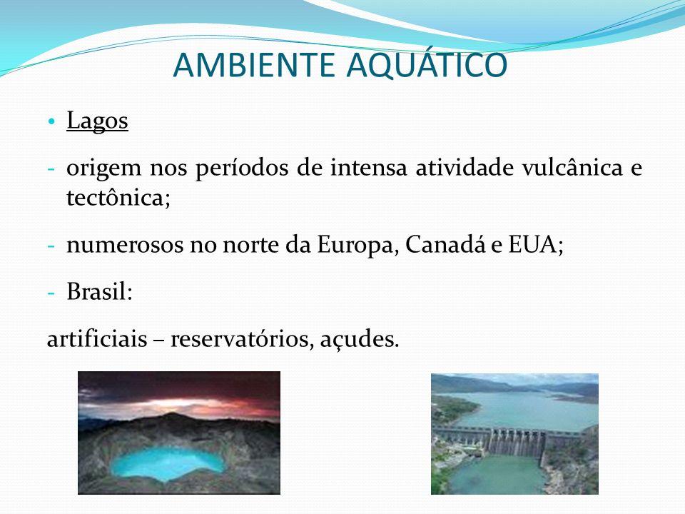 Lagos - origem nos períodos de intensa atividade vulcânica e tectônica; - numerosos no norte da Europa, Canadá e EUA; - Brasil: artificiais – reservat