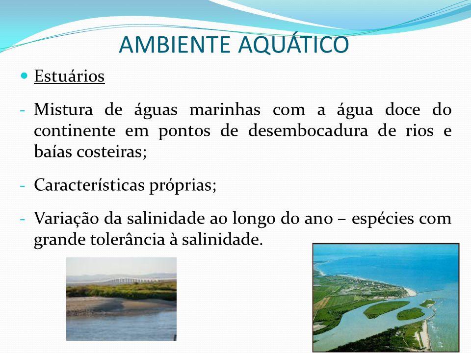 Estuários - Mistura de águas marinhas com a água doce do continente em pontos de desembocadura de rios e baías costeiras; - Características próprias;