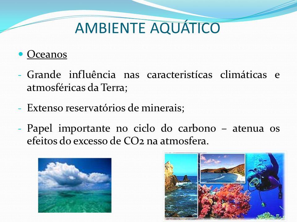 Oceanos - Grande influência nas caracteristícas climáticas e atmosféricas da Terra; - Extenso reservatórios de minerais; - Papel importante no ciclo d