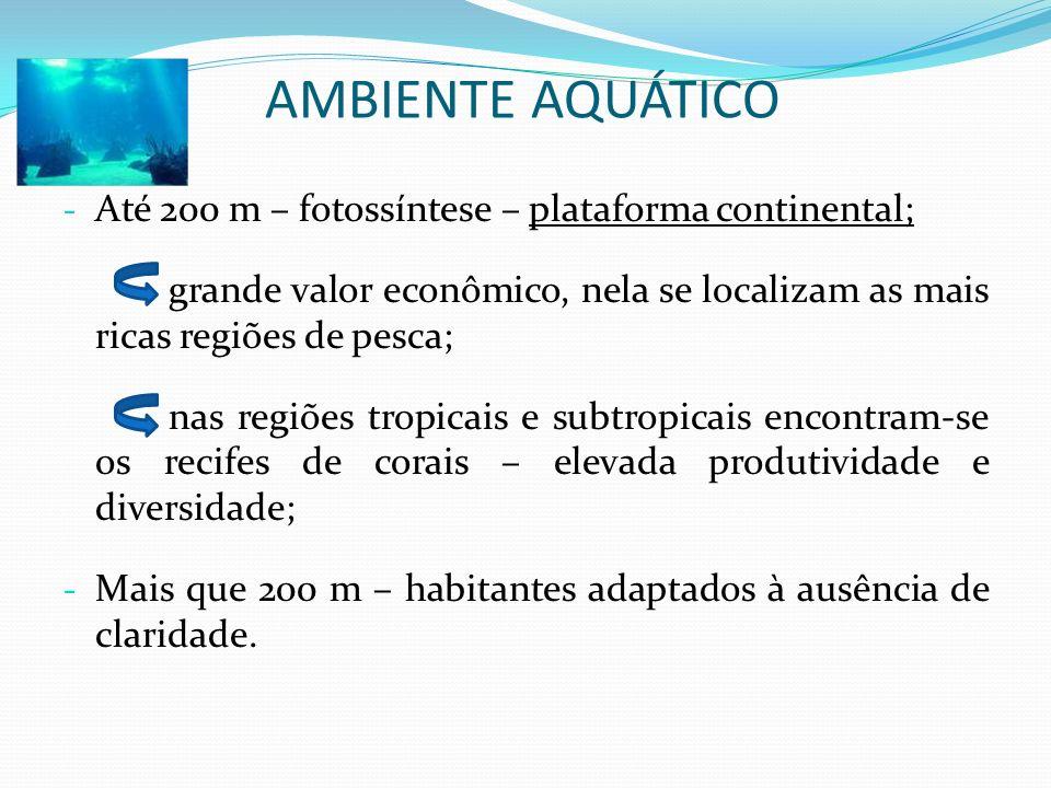 - Até 200 m – fotossíntese – plataforma continental; grande valor econômico, nela se localizam as mais ricas regiões de pesca; nas regiões tropicais e