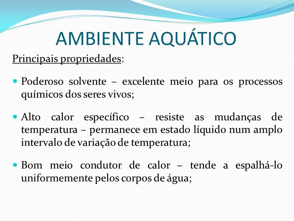 AMBIENTE AQUÁTICO Principais propriedades: Poderoso solvente – excelente meio para os processos químicos dos seres vivos; Alto calor específico – resi