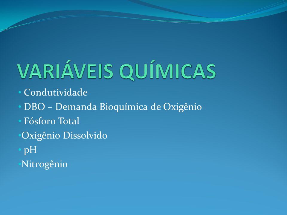 Condutividade DBO – Demanda Bioquímica de Oxigênio Fósforo Total Oxigênio Dissolvido pH Nitrogênio