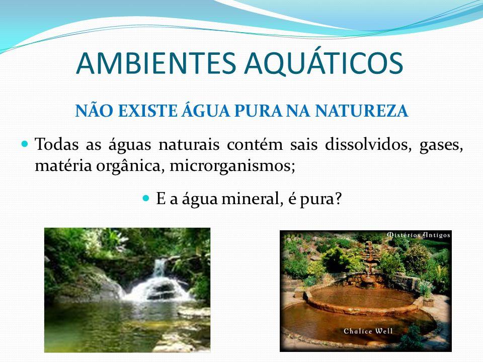 AMBIENTES AQUÁTICOS NÃO EXISTE ÁGUA PURA NA NATUREZA Todas as águas naturais contém sais dissolvidos, gases, matéria orgânica, microrganismos; E a águ