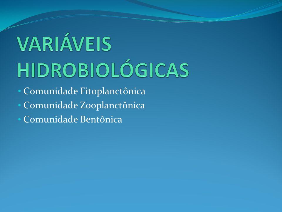 Comunidade Fitoplanctônica Comunidade Zooplanctônica Comunidade Bentônica