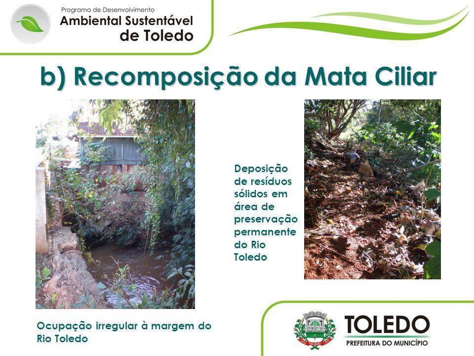 Ocupação irregular à margem do Rio Toledo b) Recomposição da Mata Ciliar Deposição de resíduos sólidos em área de preservação permanente do Rio Toledo