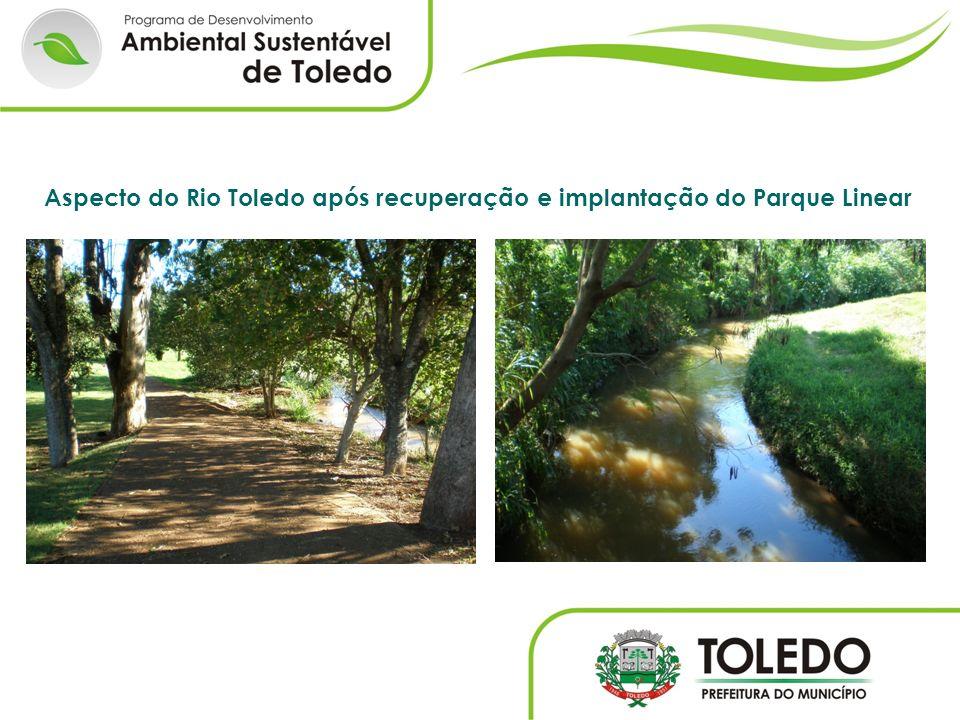 Aspecto do Rio Toledo após recuperação e implantação do Parque Linear