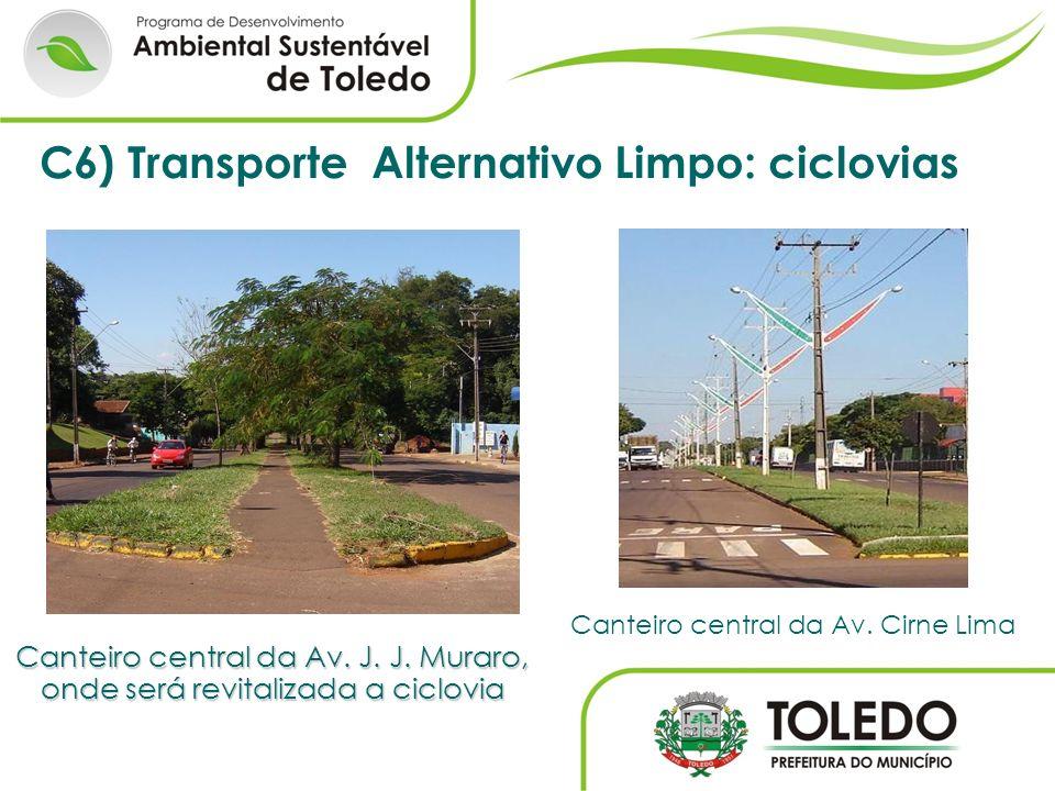 Canteiro central da Av. J. J. Muraro, onde será revitalizada a ciclovia Canteiro central da Av. Cirne Lima C6) Transporte Alternativo Limpo: ciclovias