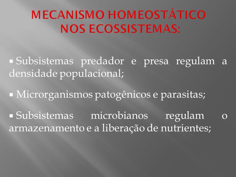 Subsistemas predador e presa regulam a densidade populacional; Microrganismos patogênicos e parasitas; Subsistemas microbianos regulam o armazenamento