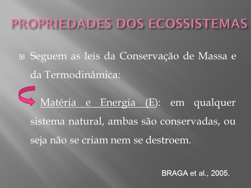 Seguem as leis da Conservação de Massa e da Termodinâmica: Matéria e Energia (E): em qualquer sistema natural, ambas são conservadas, ou seja não se c