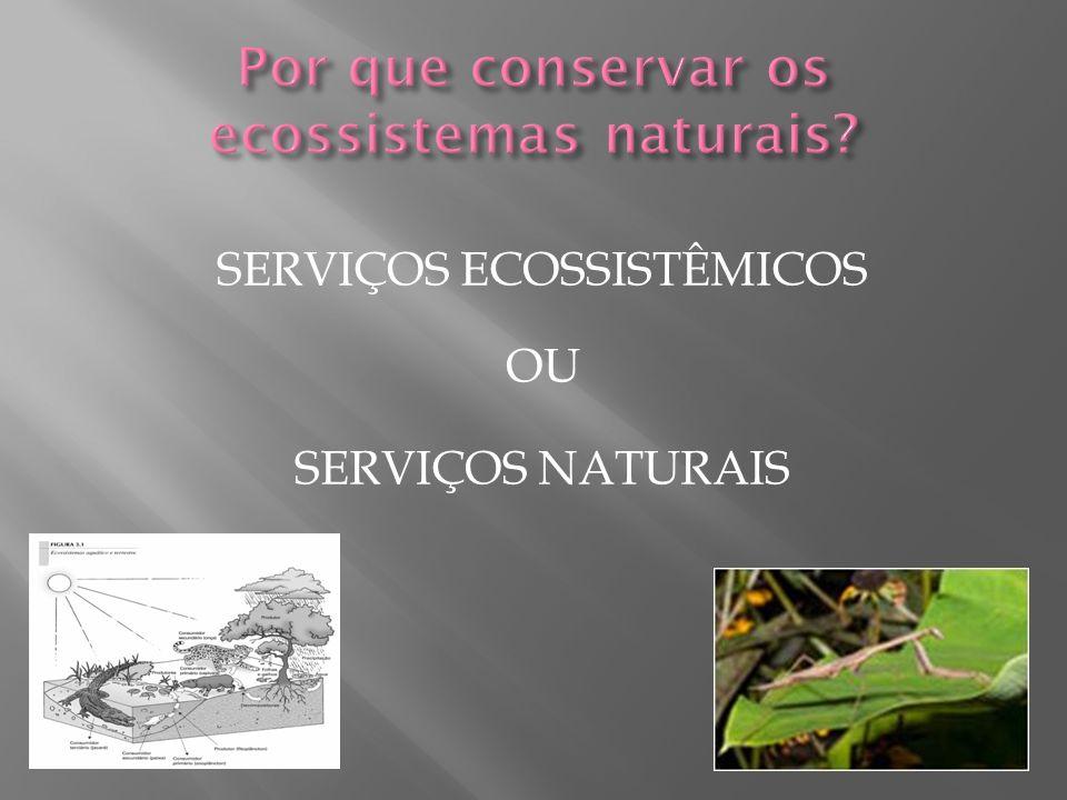 SERVIÇOS ECOSSISTÊMICOS OU SERVIÇOS NATURAIS