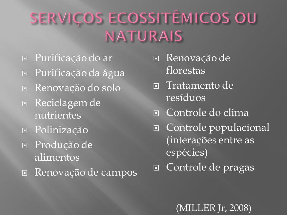 Purificação do ar Purificação da água Renovação do solo Reciclagem de nutrientes Polinização Produção de alimentos Renovação de campos Renovação de fl