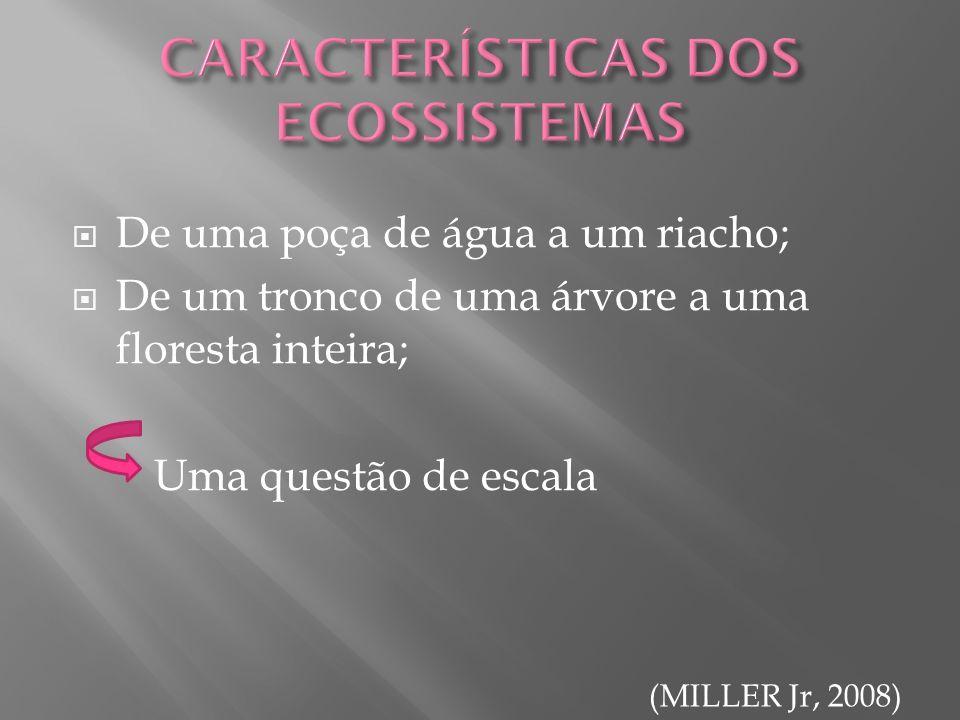 De uma poça de água a um riacho; De um tronco de uma árvore a uma floresta inteira; Uma questão de escala (MILLER Jr, 2008)