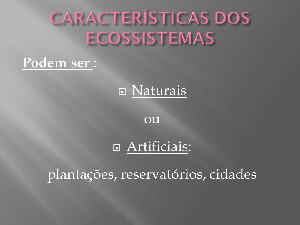 Podem ser : Naturais ou Artificiais: plantações, reservatórios, cidades