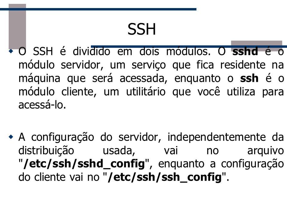 Criptografia no SSH Isso vai gerar os arquivos .ssh/id_rsa e .ssh/id_rsa.pub dentro do seu diretório home, que são respectivamente sua chave privada e a chave pública.