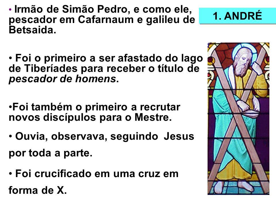 Irmão de Simão Pedro, e como ele, pescador em Cafarnaum e galileu de Betsaida.