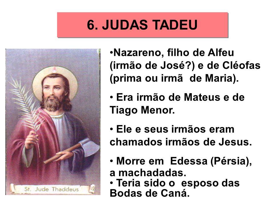 6. JUDAS TADEU Nazareno, filho de Alfeu (irmão de José?) e de Cléofas (prima ou irmã de Maria). Era irmão de Mateus e de Tiago Menor. Ele e seus irmão