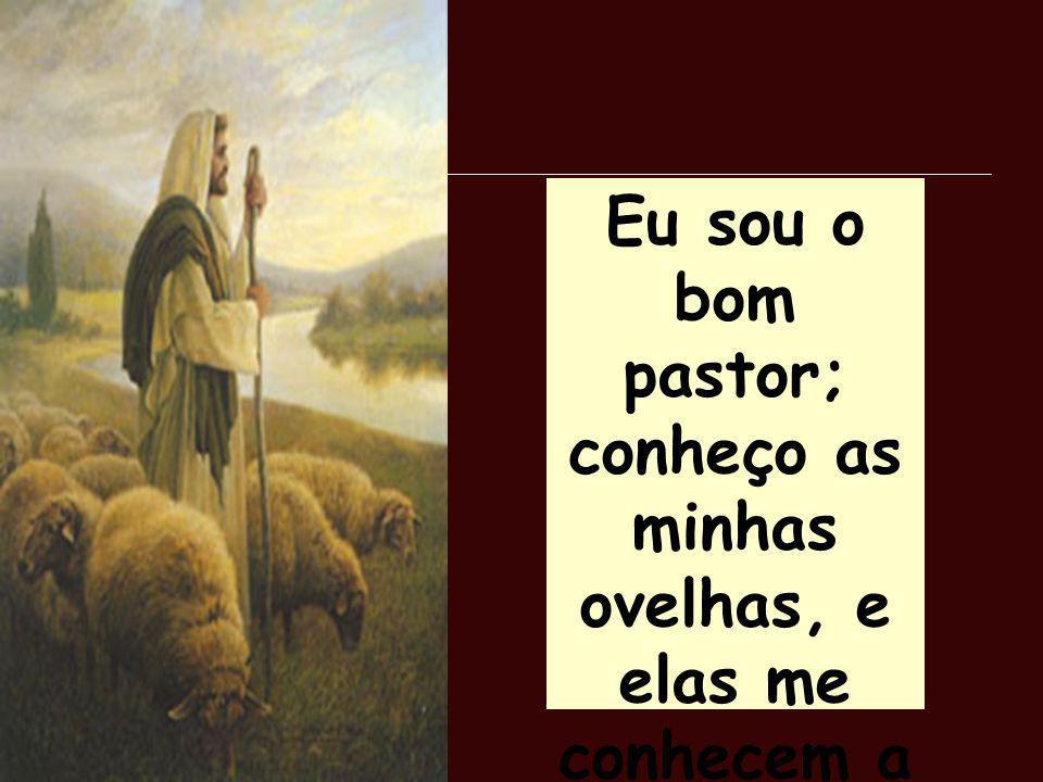 Eu sou o bom pastor; conheço as minhas ovelhas, e elas me conhecem a mim. João, 10:14