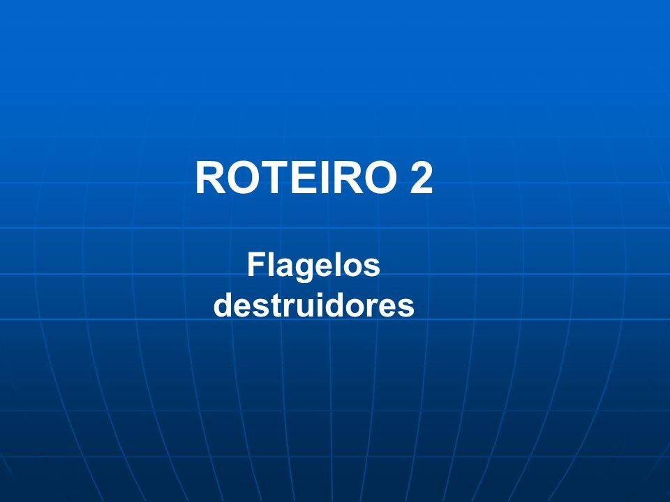 ROTEIRO 2 Flagelos destruidores