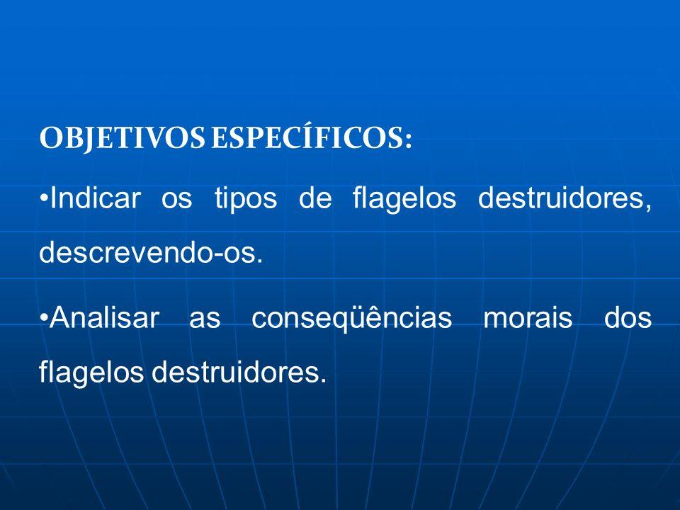OBJETIVOS ESPECÍFICOS: Indicar os tipos de flagelos destruidores, descrevendo-os. Analisar as conseqüências morais dos flagelos destruidores.