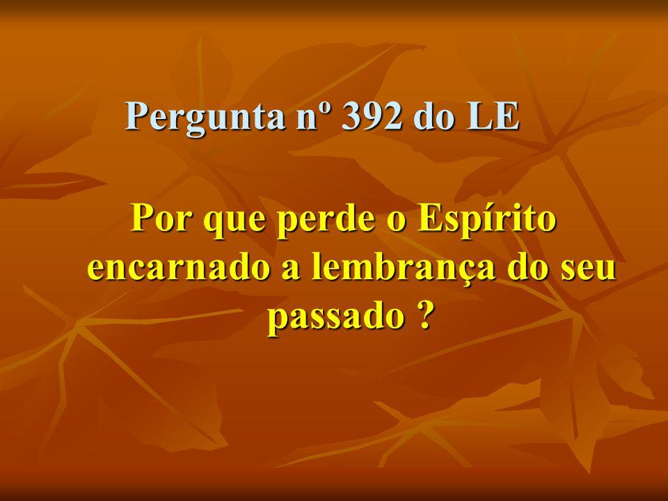 Pergunta nº 392 do LE Por que perde o Espírito encarnado a lembrança do seu passado ?