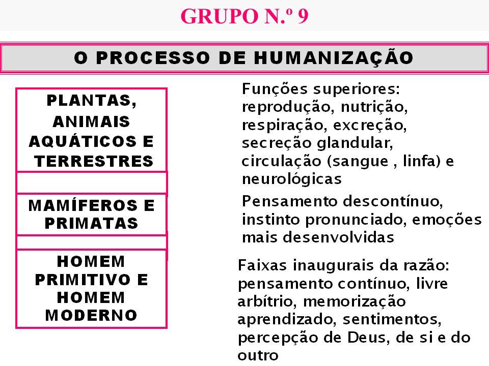 GRUPO N.º 9