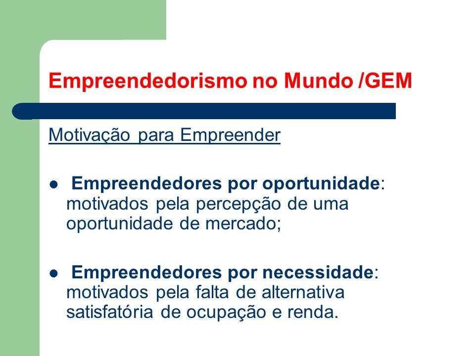 Empreendedorismo no Mundo /GEM Motivação para Empreender Empreendedores por oportunidade: motivados pela percepção de uma oportunidade de mercado; Empreendedores por necessidade: motivados pela falta de alternativa satisfatória de ocupação e renda.