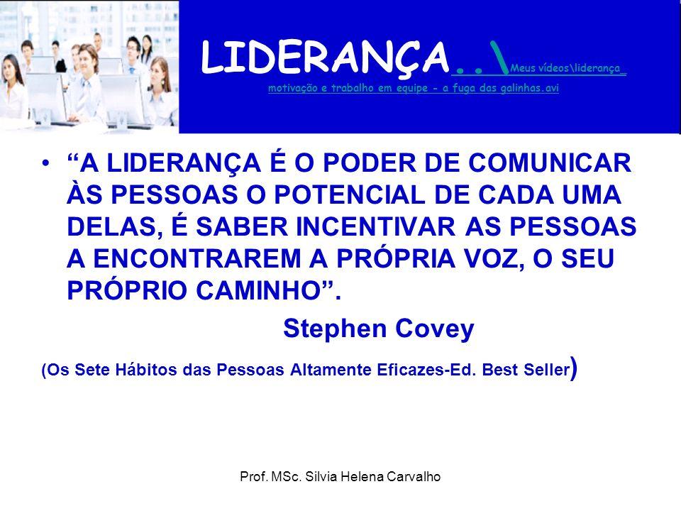 Prof. MSc. Silvia Helena Carvalho LIDERANÇA..\ Meus vídeos\liderança_ motivação e trabalho em equipe - a fuga das galinhas.avi..\ Meus vídeos\lideranç