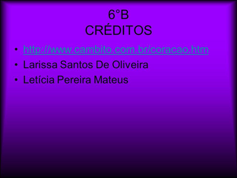 6°B CRÉDITOS http://www.cambito.com.br/coracao.htm Larissa Santos De Oliveira Letícia Pereira Mateus