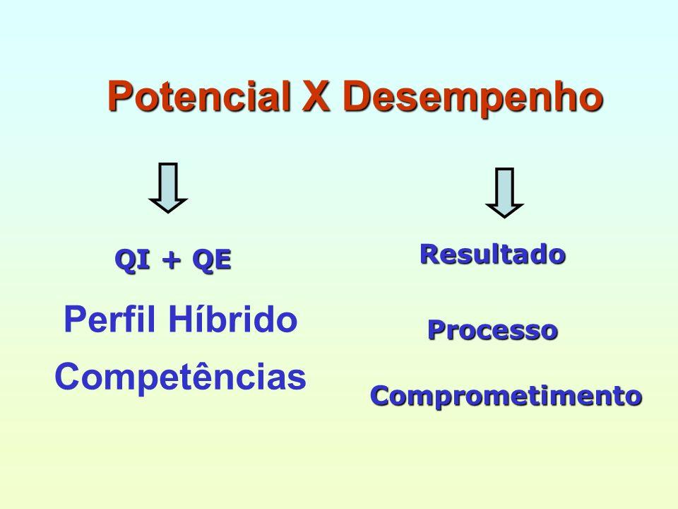 Potencial X Desempenho ResultadoProcesso Comprometimento Perfil Híbrido QI + QE Competências